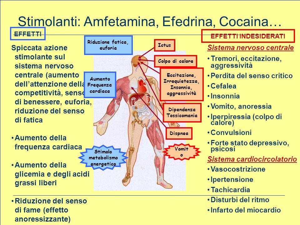 Stimolanti: Amfetamina, Efedrina, Cocaina… Sistema nervoso centrale Tremori, eccitazione, aggressività Perdita del senso critico Cefalea Insonnia Vomi