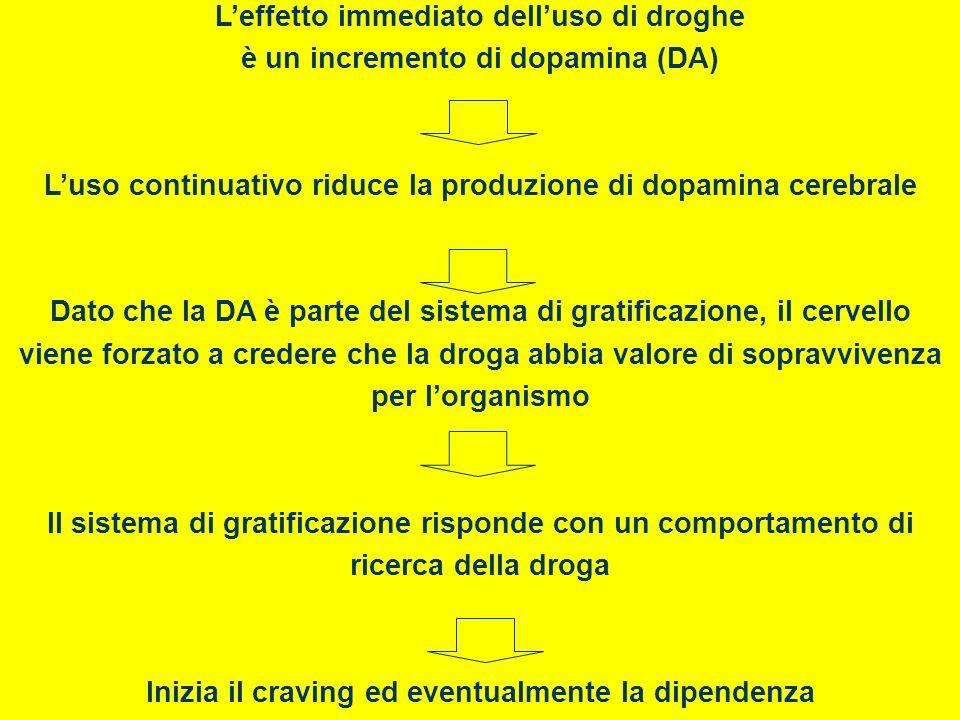Leffetto immediato delluso di droghe è un incremento di dopamina (DA) Luso continuativo riduce la produzione di dopamina cerebrale Dato che la DA è pa