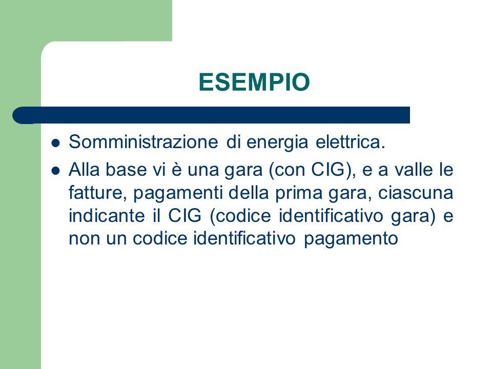 ESEMPIO Somministrazione di energia elettrica. Alla base vi è una gara (con CIG), e a valle le fatture, pagamenti della prima gara, ciascuna indicante