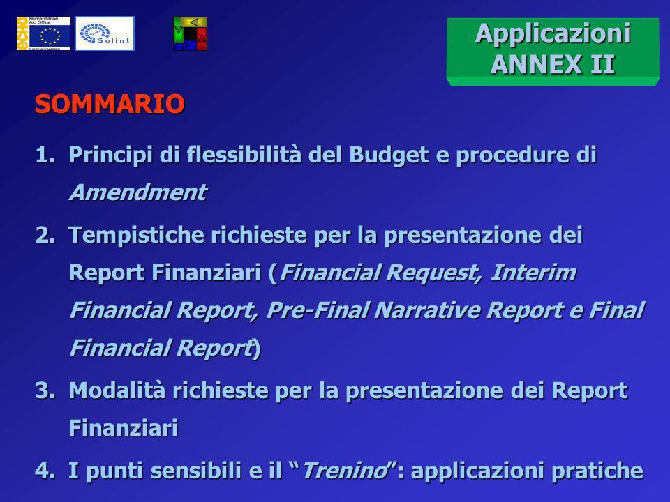 Applicazioni pratiche del budget