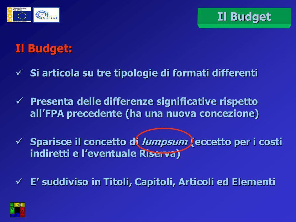 Strumenti: OBIETTIVO Facilitare la scrittura del budget e agevolare un corretto monitoraggio della rendicontazione delle spese