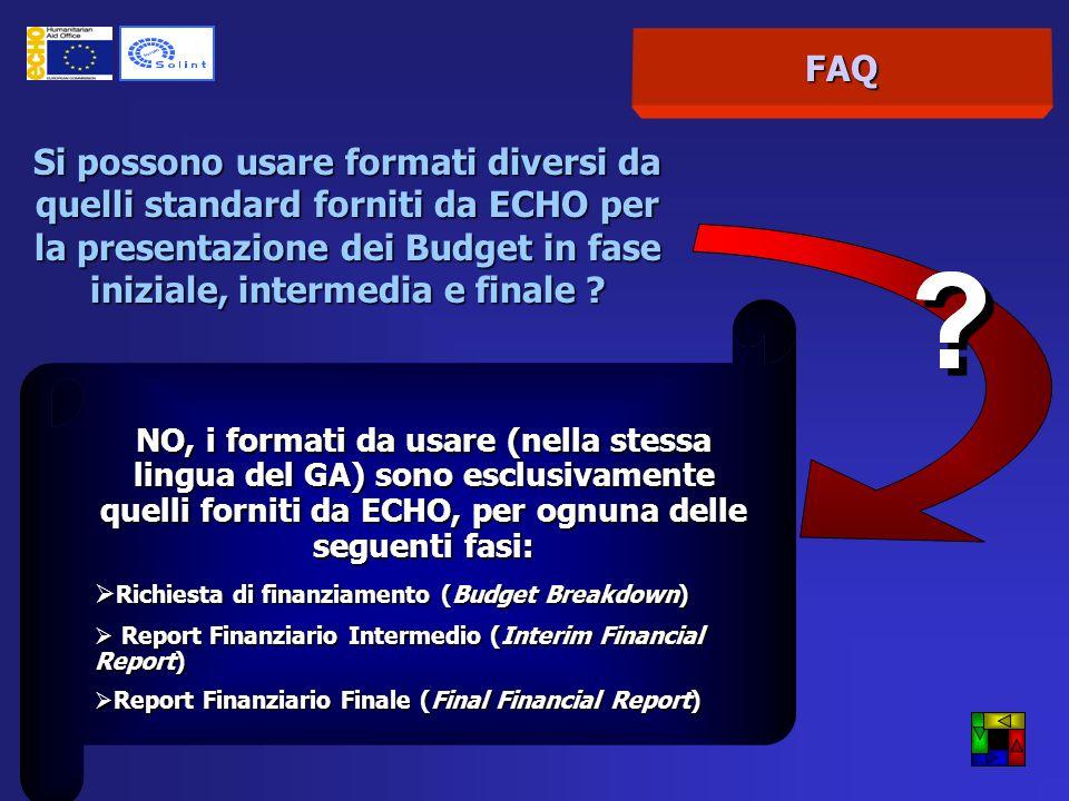 FAQ Si possono usare formati diversi da quelli standard forniti da ECHO per la presentazione dei Budget in fase iniziale, intermedia e finale .