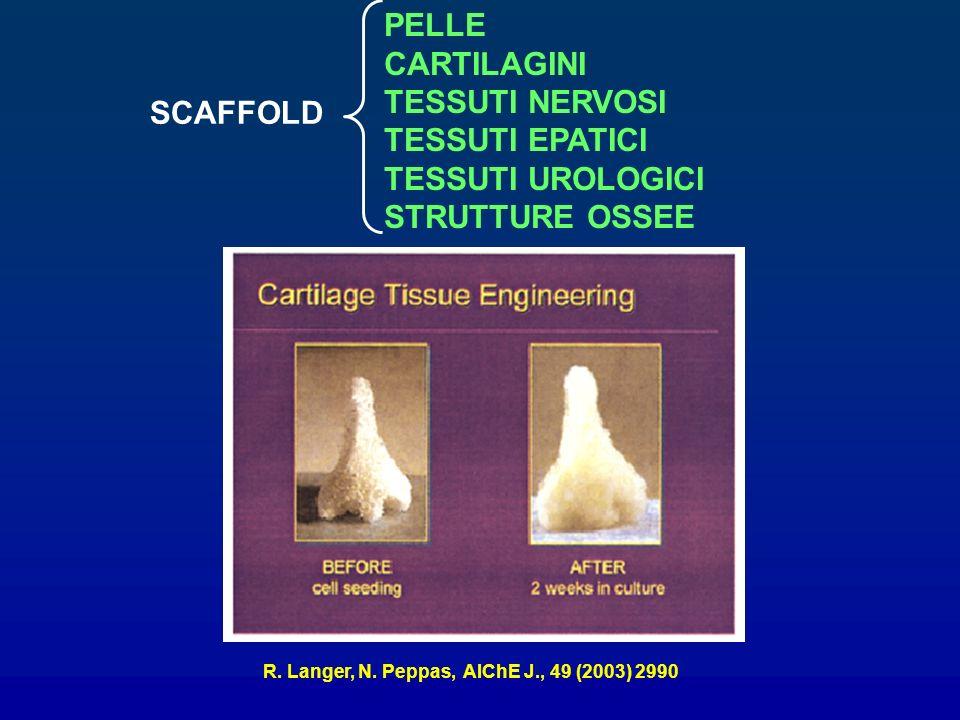 SCAFFOLD PELLE CARTILAGINI TESSUTI NERVOSI TESSUTI EPATICI TESSUTI UROLOGICI STRUTTURE OSSEE R. Langer, N. Peppas, AIChE J., 49 (2003) 2990
