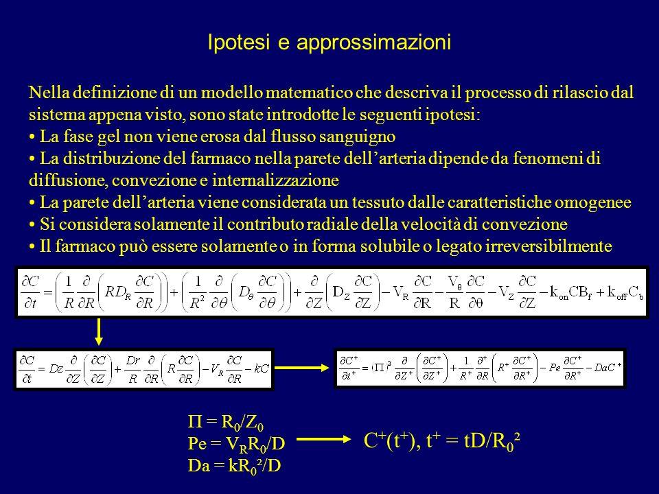 Ipotesi e approssimazioni Nella definizione di un modello matematico che descriva il processo di rilascio dal sistema appena visto, sono state introdo
