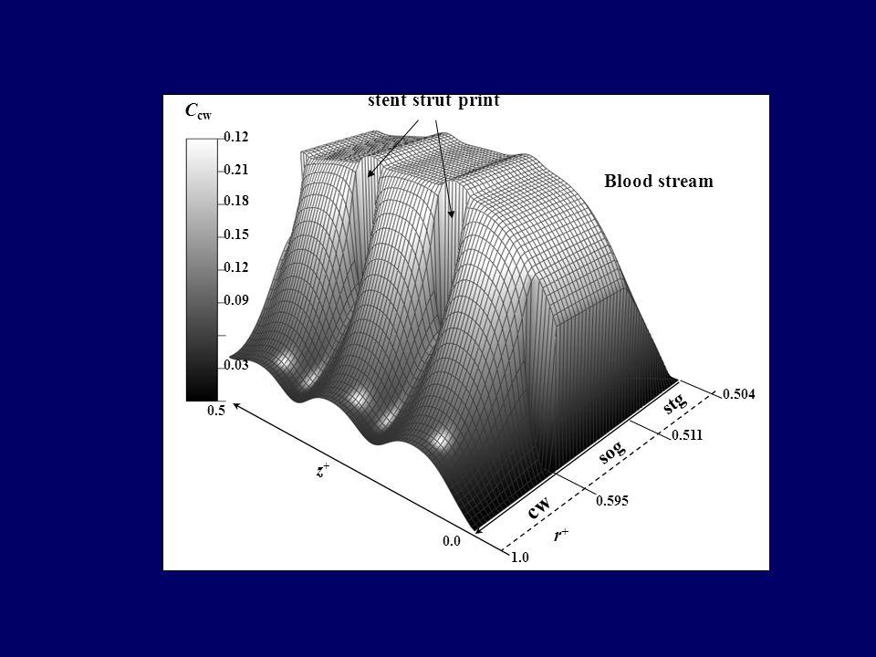 0.0 0.03 0.09 0.12 0.15 0.18 0.21 0.12 C cw r+r+ z+z+ 0.5 0.504 1.0 Blood stream cw sog stg 0.511 0.595 stent strut print