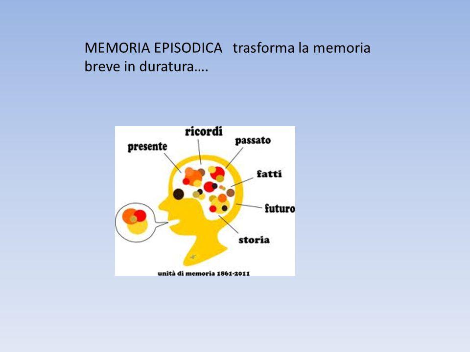 MEMORIA EPISODICA trasforma la memoria breve in duratura….