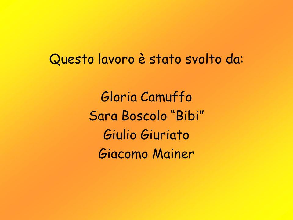 Questo lavoro è stato svolto da: Gloria Camuffo Sara Boscolo Bibi Giulio Giuriato Giacomo Mainer
