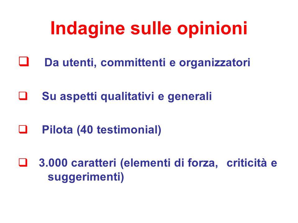 Indagine sulle opinioni Da utenti, committenti e organizzatori Su aspetti qualitativi e generali Pilota (40 testimonial) 3.000 caratteri (elementi di forza, criticità e suggerimenti)
