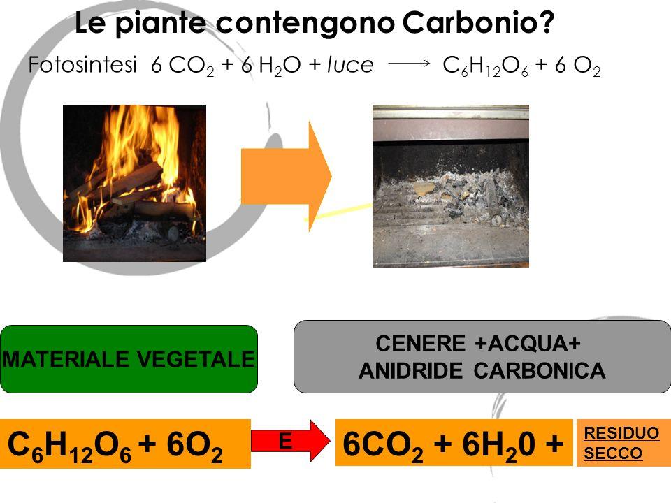 Le piante contengono Carbonio? MATERIALE VEGETALE CENERE +ACQUA+ ANIDRIDE CARBONICA C 6 H 12 O 6 + 6O 2 E 6CO 2 + 6H 2 0 + RESIDUO SECCO Fotosintesi 6