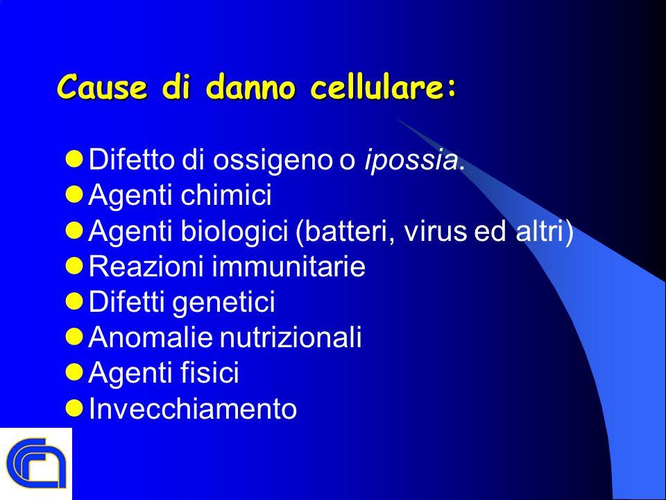 Cause di danno cellulare: Difetto di ossigeno o ipossia. Agenti chimici Agenti biologici (batteri, virus ed altri) Reazioni immunitarie Difetti geneti