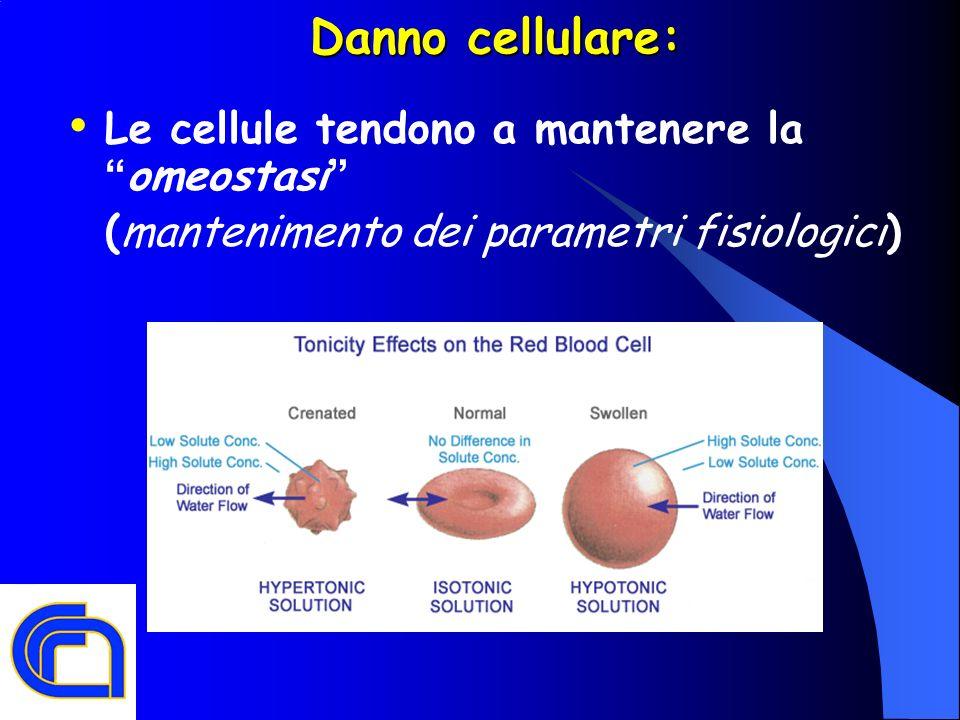 Danno cellulare: Le cellule tendono a mantenere la omeostasi (mantenimento dei parametri fisiologici)