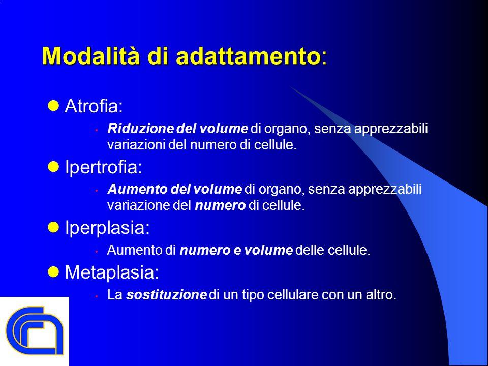 Modalità di adattamento: Atrofia: Riduzione del volume di organo, senza apprezzabili variazioni del numero di cellule. Ipertrofia: Aumento del volume
