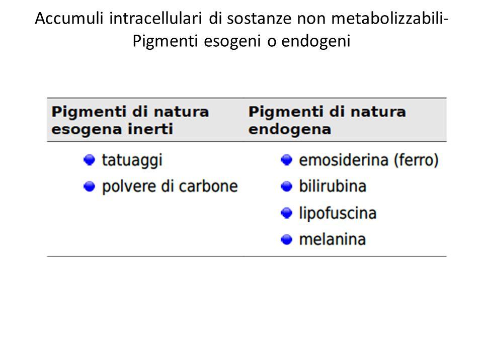Accumuli intracellulari di sostanze non metabolizzabili- Pigmenti esogeni