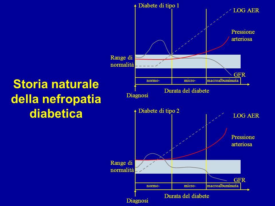 Storia naturale della nefropatia diabetica Diagnosi Durata del diabete Diabete di tipo 1 LOG AER GFR Pressione arteriosa normo-micro-macroalbuminuria Range di normalità Diagnosi Durata del diabete Diabete di tipo 2 LOG AER GFR Pressione arteriosa normo-micro-macroalbuminuria Range di normalità
