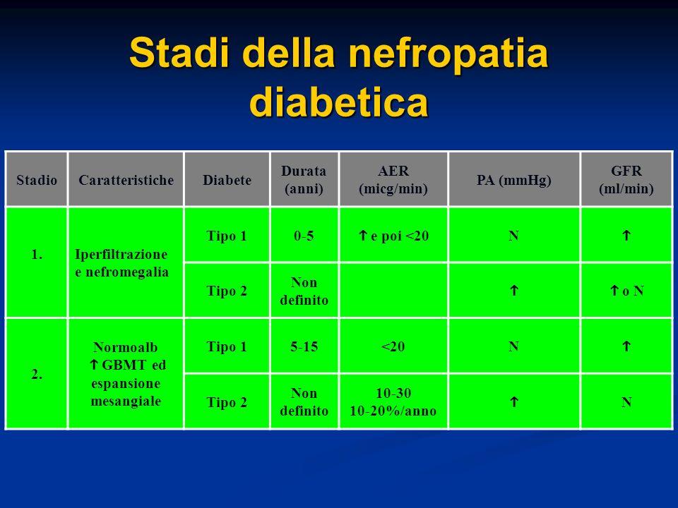 Stadi della nefropatia diabetica StadioCaratteristicheDiabete Durata (anni) AER (micg/min) PA (mmHg) GFR (ml/min) 1.Iperfiltrazione e nefromegalia Tipo 10-5 e poi <20 N Tipo 2 Non definito o N 2.