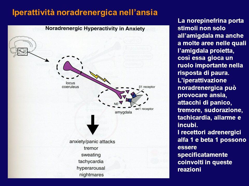 Iperattività noradrenergica nellansia La norepinefrina porta stimoli non solo allamigdala ma anche a molte aree nelle quali lamigdala proietta, così e