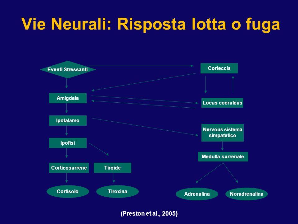 (Preston et al., 2005) Vie Neurali: Risposta lotta o fuga Eventi Stressanti Amigdala Ipotalamo Ipofisi Corticosurrene Cortisolo Corteccia Locus coerul