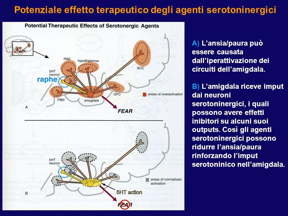 Potenziale effetto terapeutico degli agenti serotoninergici A) Lansia/paura può essere causata dalliperattivazione dei circuiti dellamigdala. B) Lamig