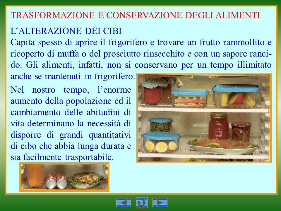 TRASFORMAZIONE E CONSERVAZIONE DEGLI ALIMENTI LALTERAZIONE DEI CIBI Capita spesso di aprire il frigorifero e trovare un frutto rammollito e ricoperto