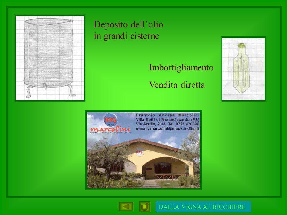 Imbottigliamento Vendita diretta Deposito dellolio in grandi cisterne DALLA VIGNA AL BICCHIERE
