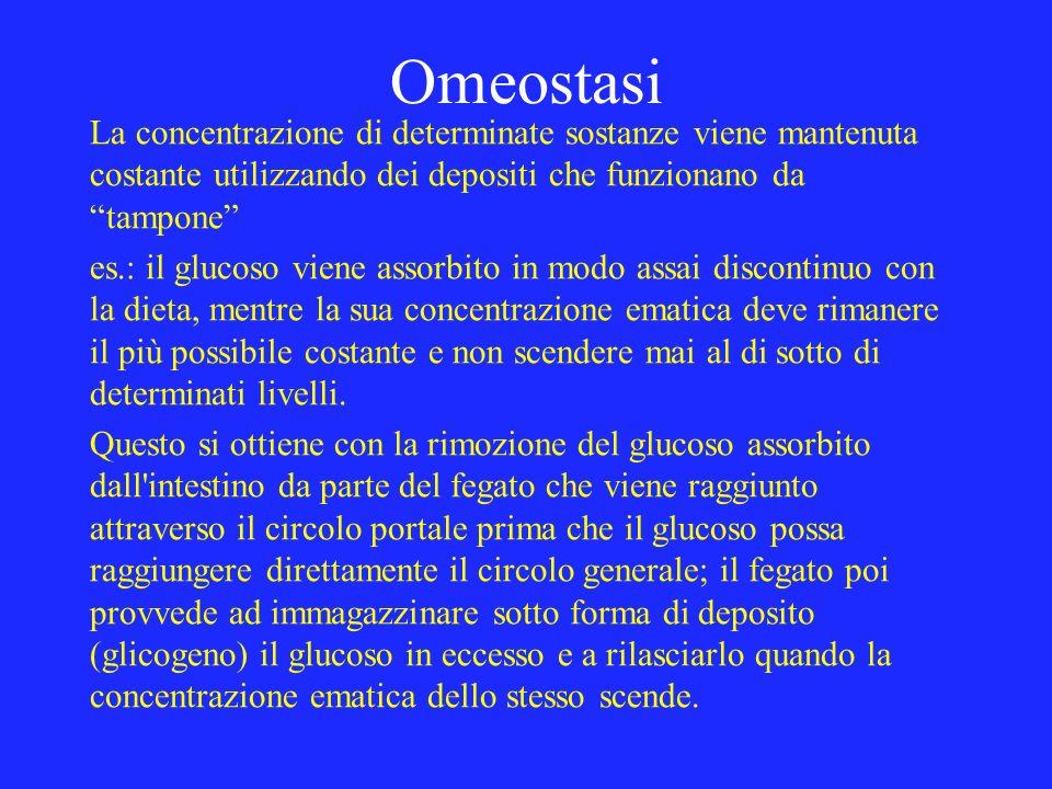 Omeostasi La concentrazione di determinate sostanze viene mantenuta costante utilizzando dei depositi che funzionano datampone es.: il glucoso viene a