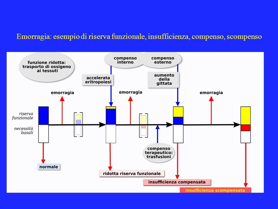 Emorragia: esempio di riserva funzionale, insufficienza, compenso, scompenso