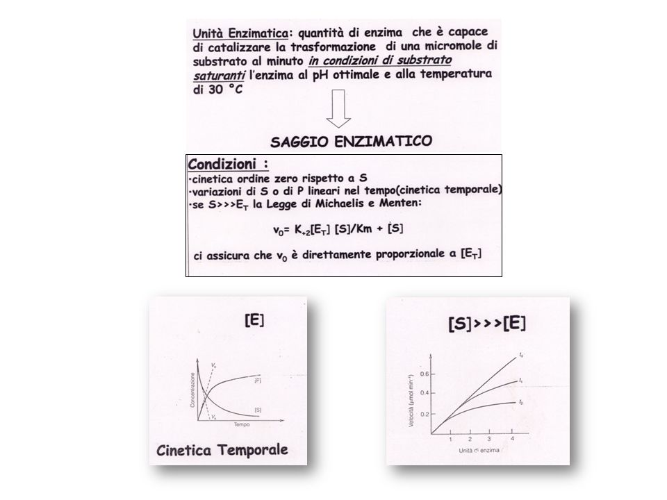 SAGGIO ENZIMATICO Condizioni: cinetica di ordine zero rispetto a S (velocità della reazione indipendente da S) variazioni di S o P lineari nel tempo (cinetica temporale) se S>>>Et la Legge di Michaelis e Menten: Vo=K [Et] [S] / Km + [S] ci assicura che Vo è direttamente proporzionale a [Et]
