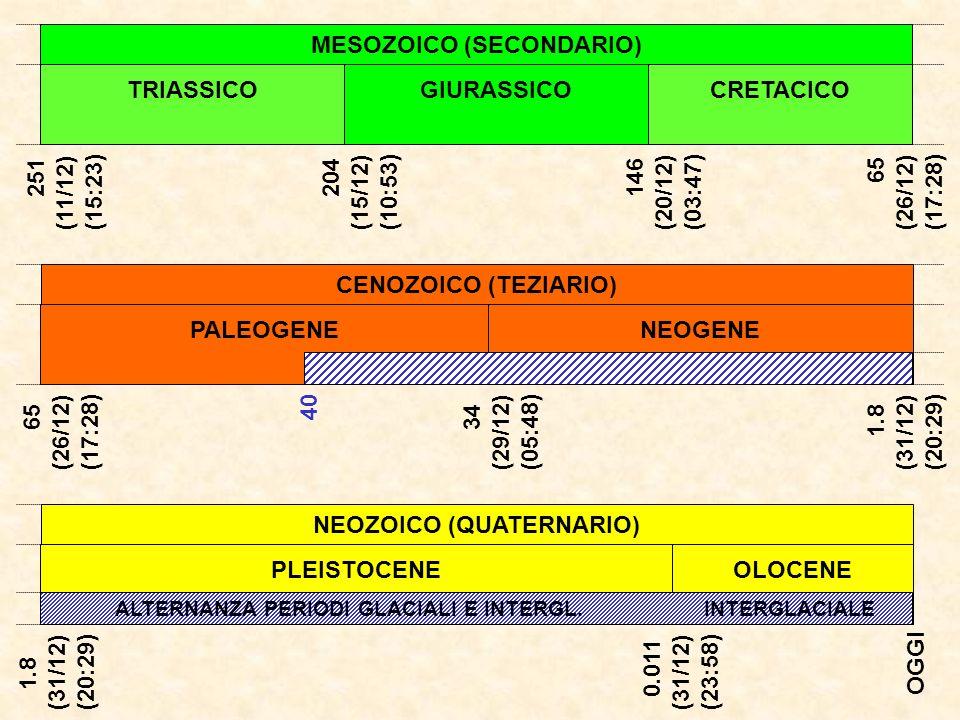 NEOZOICO (QUATERNARIO) PLEISTOCENEOLOCENE ALTERNANZA PERIODI GLACIALI E INTERGL. INTERGLACIALE 1.8 (31/12) (20:29) CENOZOICO (TEZIARIO) NEOGENE 65 (26