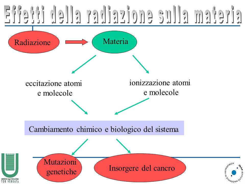 Radiazione Materia eccitazione atomi e molecole ionizzazione atomi e molecole Cambiamento chimico e biologico del sistema Mutazioni genetiche Insorgere del cancro