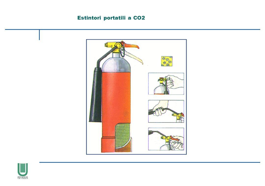 Estintori portatili a CO2