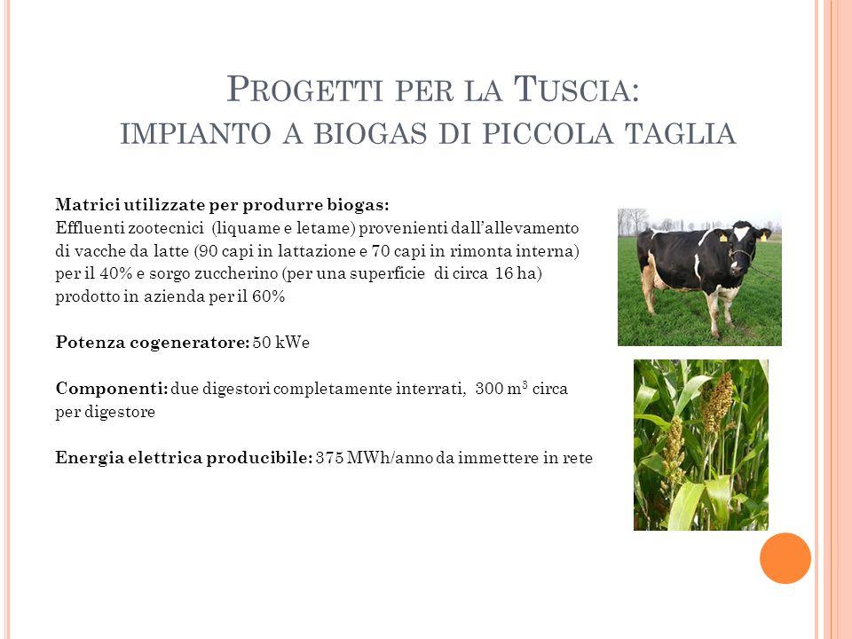 P ROGETTI PER LA T USCIA : IMPIANTO A BIOGAS DI PICCOLA TAGLIA Matrici utilizzate per produrre biogas: Effluenti zootecnici (liquame e letame) proveni