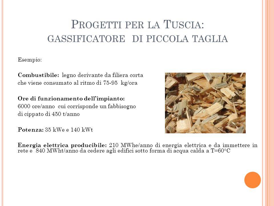 P ROGETTI PER LA T USCIA : GASSIFICATORE DI PICCOLA TAGLIA Esempio: Combustibile: legno derivante da filiera corta che viene consumato al ritmo di 75-