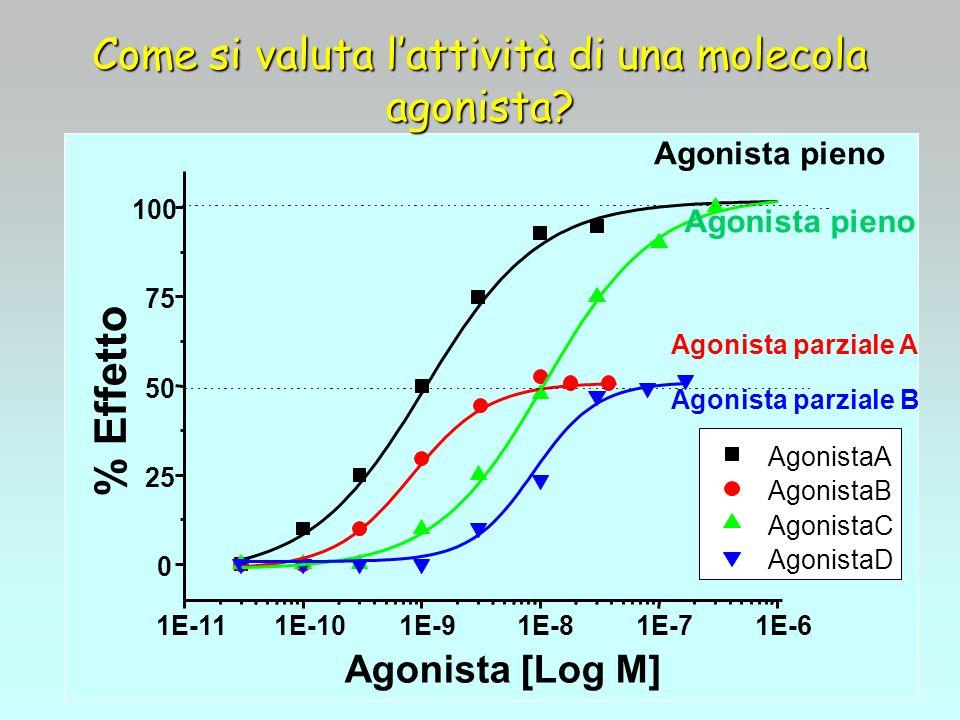 Come si valuta lattività di una molecola agonista? 1E-111E-101E-91E-81E-71E-6 0 25 50 75 100 AgonistaA AgonistaB AgonistaC AgonistaD % Effetto Agonist