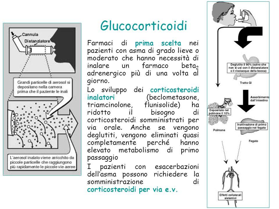 Glucocorticoidi Farmaci di prima scelta nei pazienti con asma di grado lieve o moderato che hanno necessità di inalare un farmaco beta 2 adrenergico p