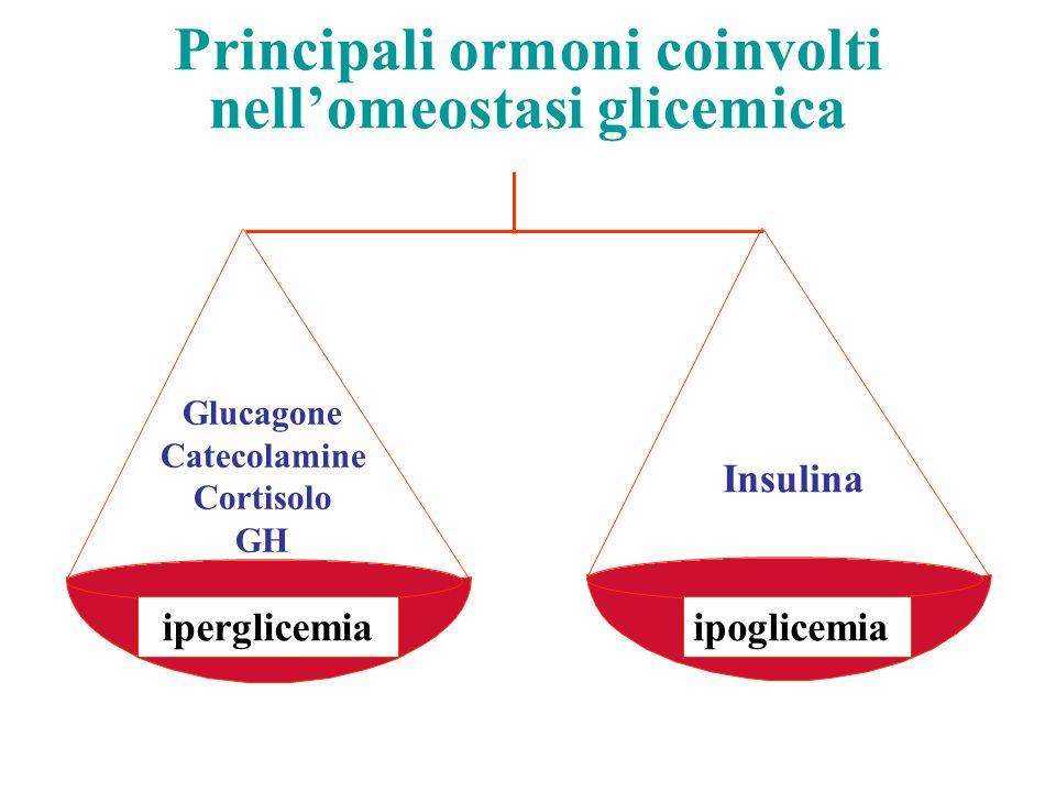 Principali ormoni coinvolti nellomeostasi glicemica Insulina Glucagone Catecolamine Cortisolo GH iperglicemiaipoglicemia