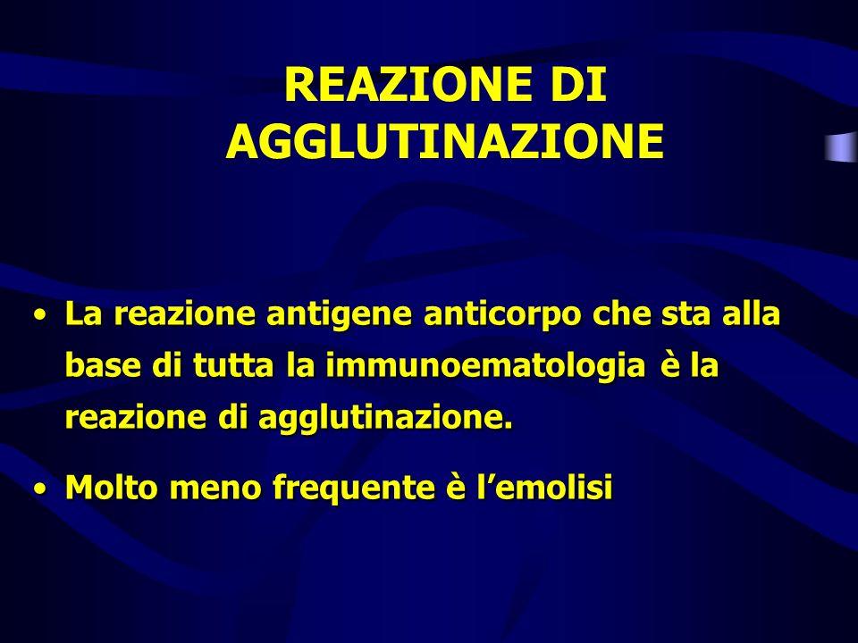 REAZIONE DI AGGLUTINAZIONE La reazione antigene anticorpo che sta alla base di tutta la immunoematologia è la reazione di agglutinazione. Molto meno f