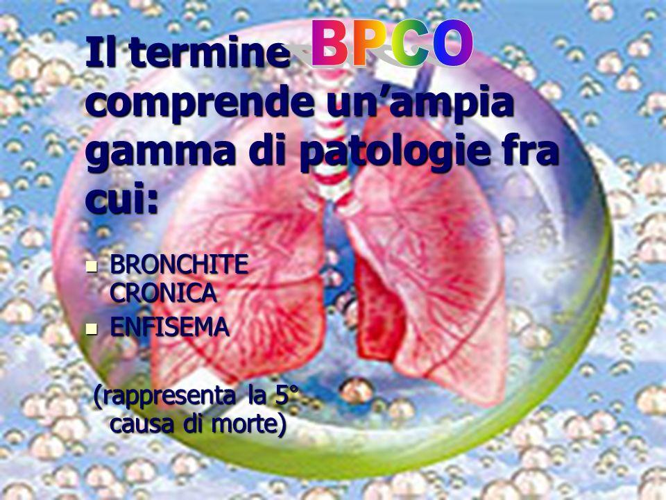 13 Il termine comprende unampia gamma di patologie fra cui: BRONCHITE CRONICA BRONCHITE CRONICA ENFISEMA ENFISEMA (rappresenta la 5° causa di morte) (