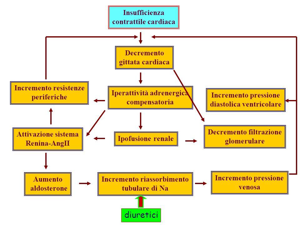 Insufficienza contrattile cardiaca Decremento gittata cardiaca Iperattività adrenergica compensatoria Ipofusione renale Incremento riassorbimento tubulare di Na Incremento pressione venosa Decremento filtrazione glomerulare Incremento resistenze periferiche Attivazione sistema Renina-AngII Aumento aldosterone Incremento pressione diastolica ventricolare diuretici
