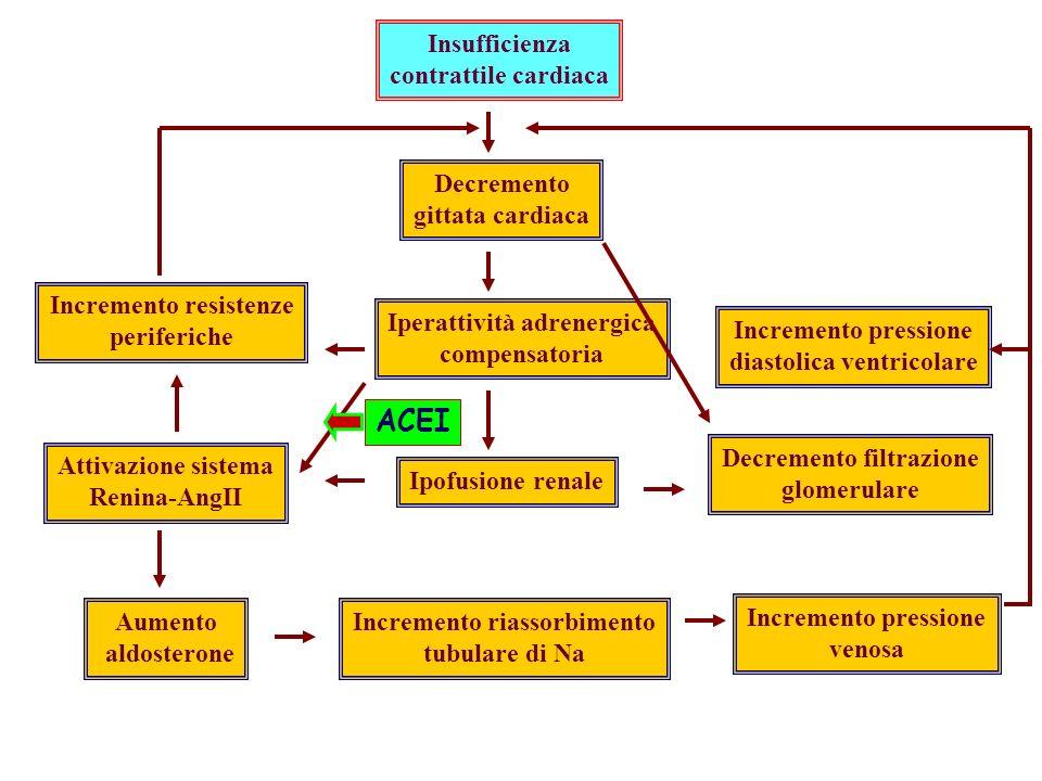 Insufficienza contrattile cardiaca Decremento gittata cardiaca Iperattività adrenergica compensatoria Ipofusione renale Incremento riassorbimento tubulare di Na Incremento pressione venosa Decremento filtrazione glomerulare Incremento resistenze periferiche Attivazione sistema Renina-AngII Aumento aldosterone Incremento pressione diastolica ventricolare ACEI