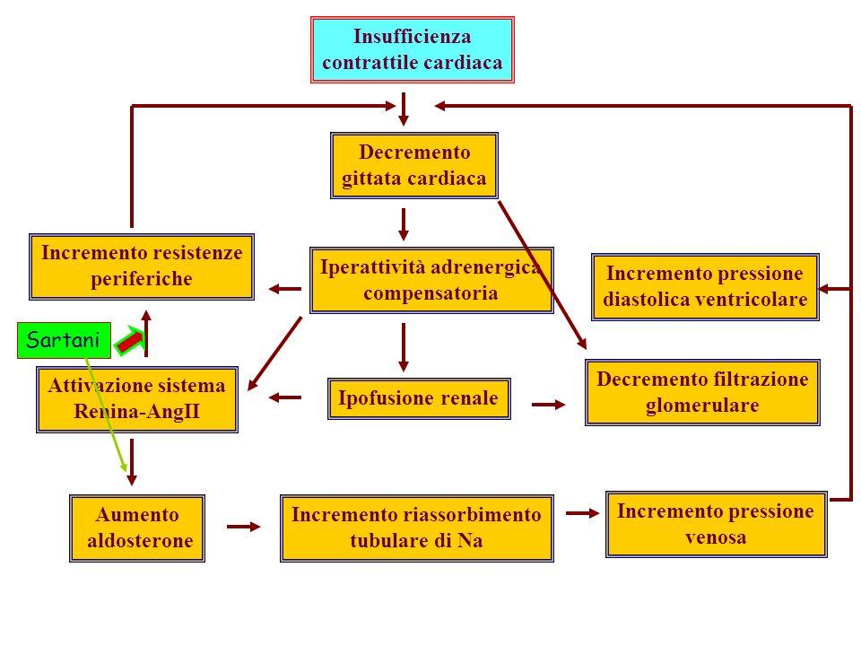 Insufficienza contrattile cardiaca Decremento gittata cardiaca Iperattività adrenergica compensatoria Ipofusione renale Incremento riassorbimento tubulare di Na Incremento pressione venosa Decremento filtrazione glomerulare Incremento resistenze periferiche Attivazione sistema Renina-AngII Aumento aldosterone Incremento pressione diastolica ventricolare Sartani