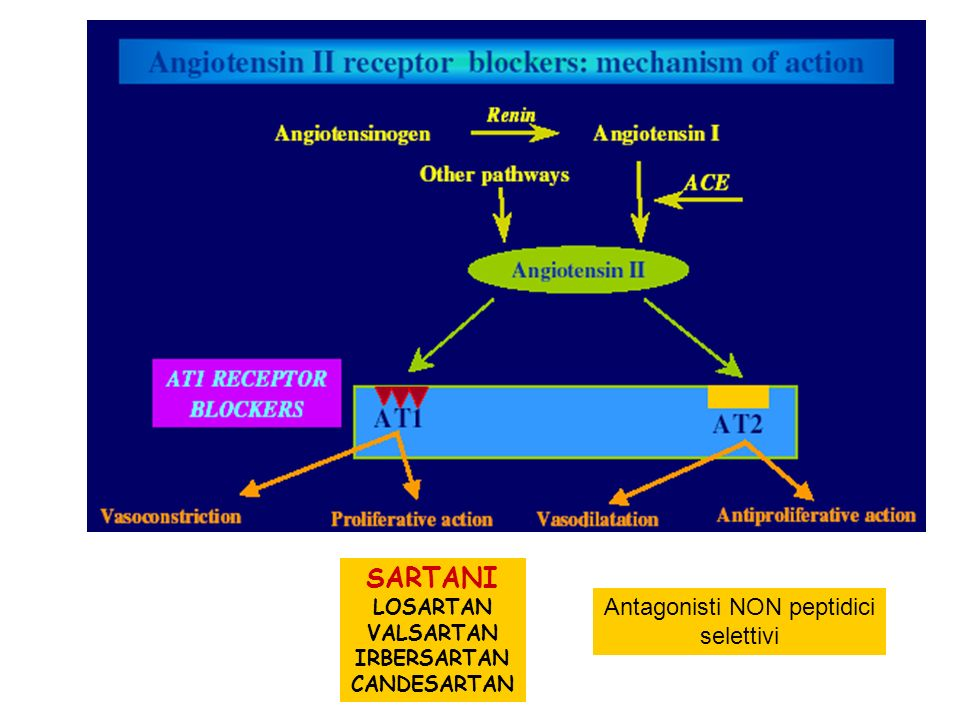 SARTANI LOSARTAN VALSARTAN IRBERSARTAN CANDESARTAN Antagonisti NON peptidici selettivi
