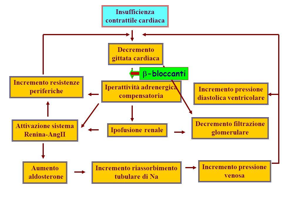 Insufficienza contrattile cardiaca Decremento gittata cardiaca Iperattività adrenergica compensatoria Ipofusione renale Incremento riassorbimento tubulare di Na Incremento pressione venosa Decremento filtrazione glomerulare Incremento resistenze periferiche Attivazione sistema Renina-AngII Aumento aldosterone Incremento pressione diastolica ventricolare -bloccanti
