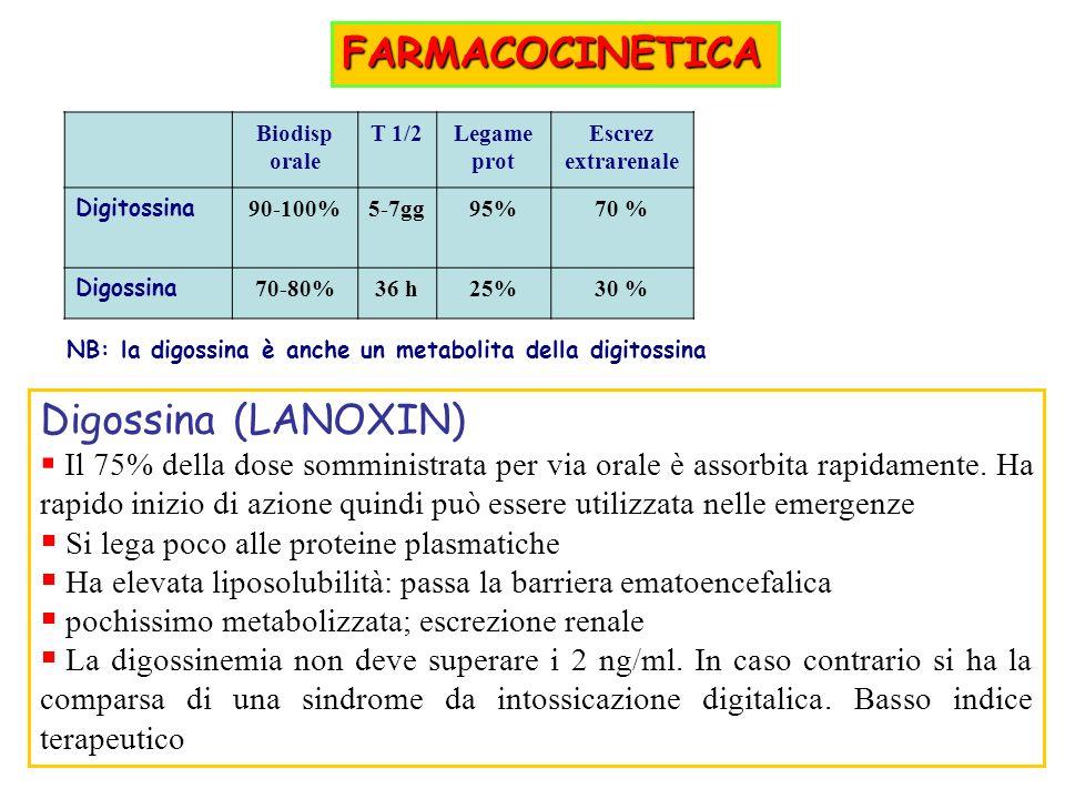 Biodisp orale T 1/2Legame prot Escrez extrarenale Digitossina 90-100%5-7gg95%70 % Digossina 70-80%36 h25%30 % NB: la digossina è anche un metabolita della digitossina FARMACOCINETICA Digossina (LANOXIN) Il 75% della dose somministrata per via orale è assorbita rapidamente.