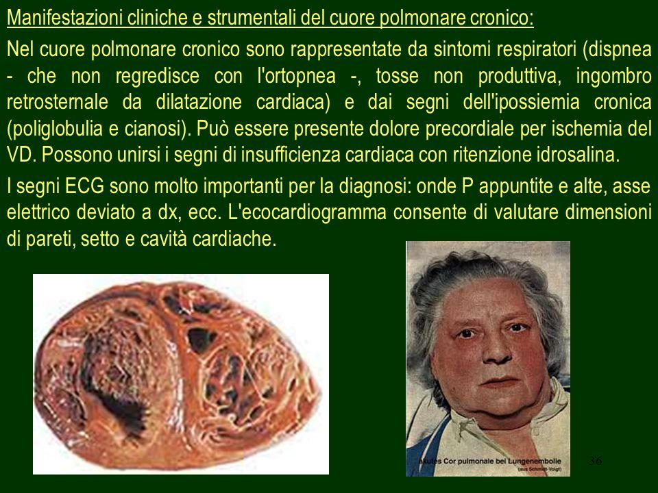 36 Manifestazioni cliniche e strumentali del cuore polmonare cronico: Nel cuore polmonare cronico sono rappresentate da sintomi respiratori (dispnea -