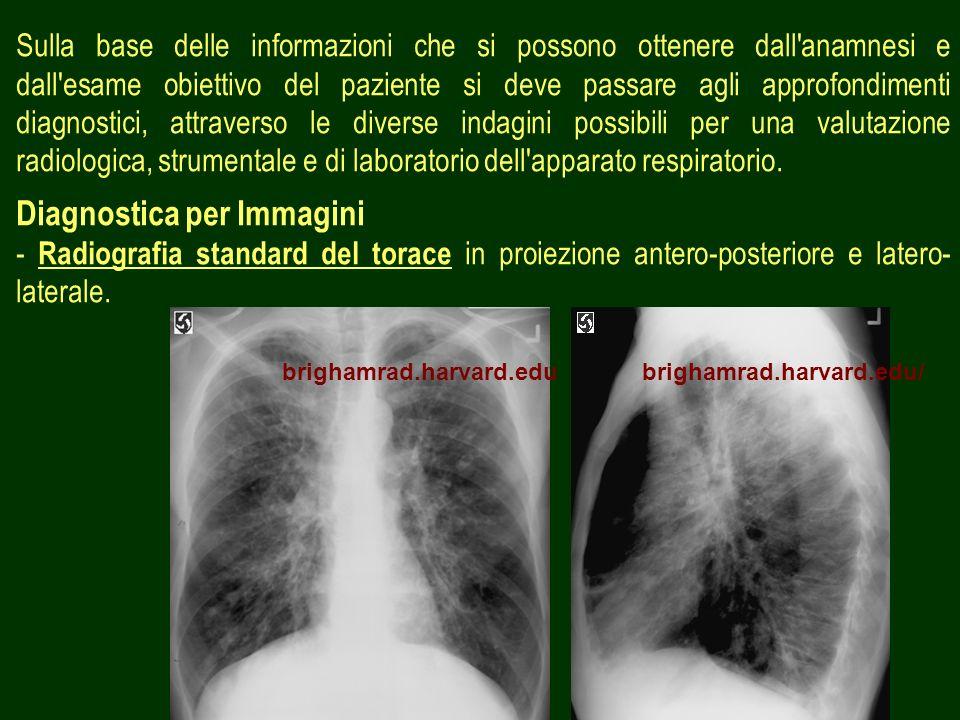 2 Sulla base delle informazioni che si possono ottenere dall'anamnesi e dall'esame obiettivo del paziente si deve passare agli approfondimenti diagnos