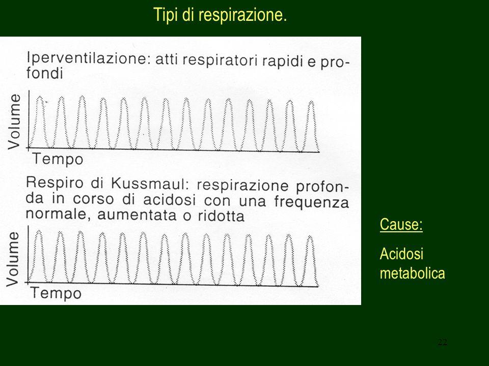 22 Tipi di respirazione. Cause: Acidosi metabolica