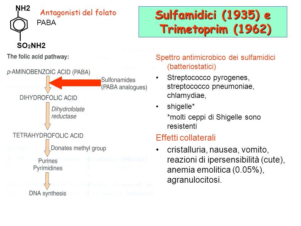 Sulfamidici (1935) e Trimetoprim (1962) Spettro antimicrobico dei sulfamidici (batteriostatici) Streptococco pyrogenes, streptococco pneumoniae, chlamydiae, shigelle* *molti ceppi di Shigelle sono resistenti Effetti collaterali cristalluria, nausea, vomito, reazioni di ipersensibilità (cute), anemia emolitica (0.05%), agranulocitosi.