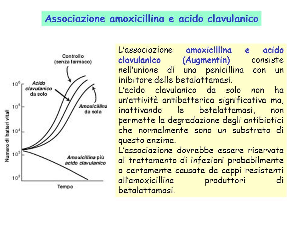 Lassociazione amoxicillina e acido clavulanico (Augmentin) consiste nellunione di una penicillina con un inibitore delle betalattamasi.