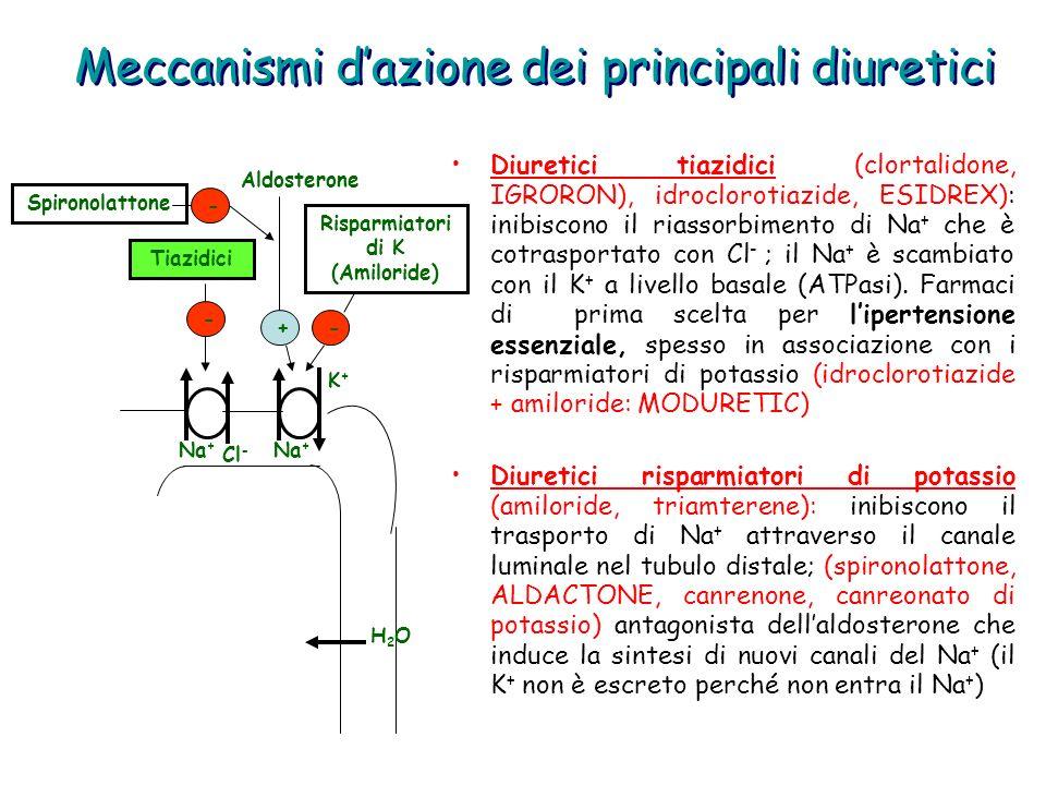 Meccanismi dazione dei principali diuretici Diuretici tiazidici (clortalidone, IGRORON), idroclorotiazide, ESIDREX): inibiscono il riassorbimento di N