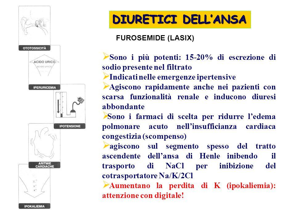 DIURETICI DELLANSA FUROSEMIDE (LASIX) Sono i più potenti: 15-20% di escrezione di sodio presente nel filtrato Indicati nelle emergenze ipertensive Agi